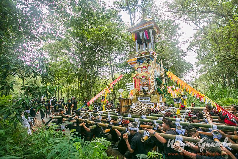 Ngaben Ceremony in Suter Village